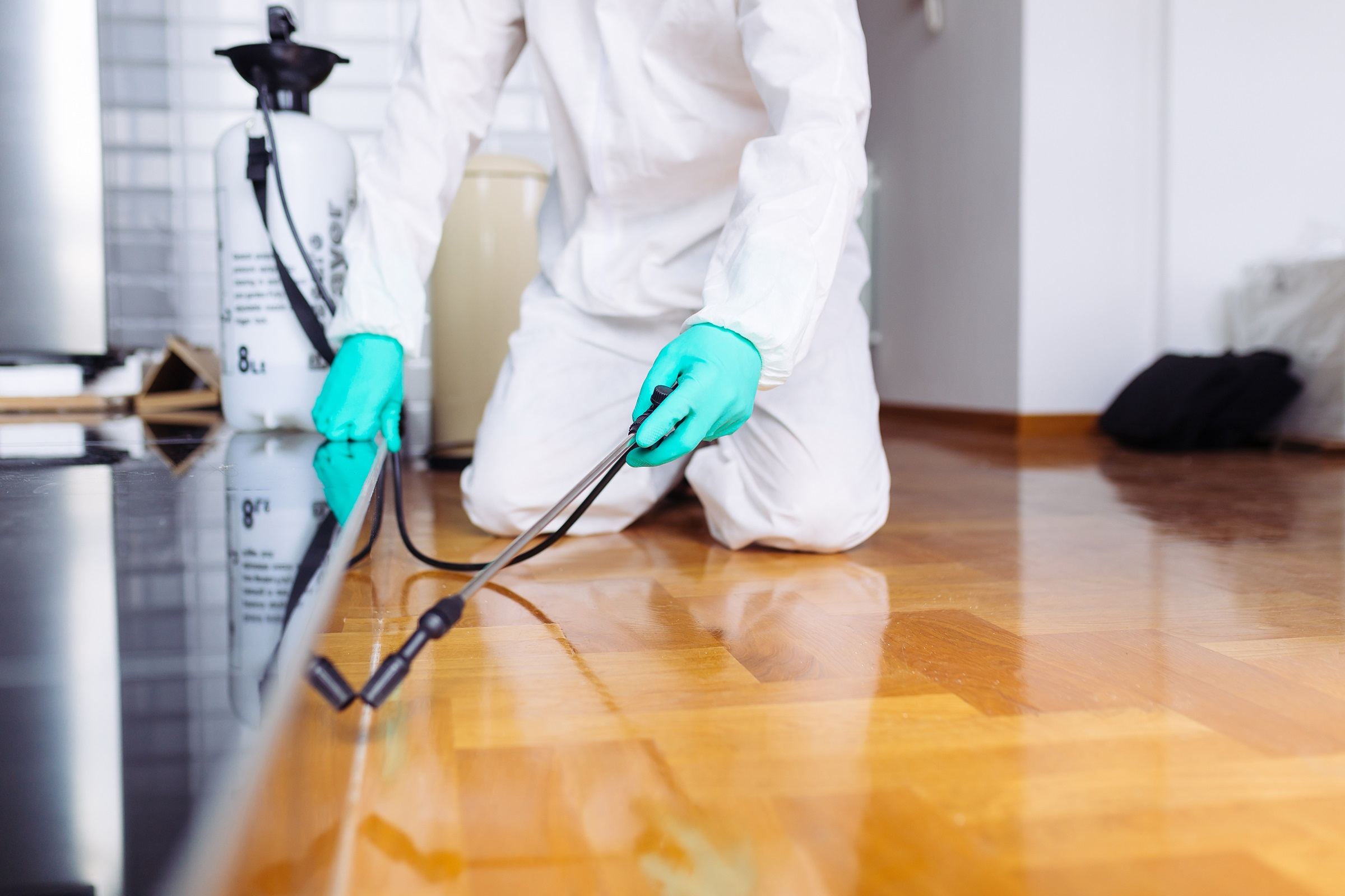 Pest-control-services-goa